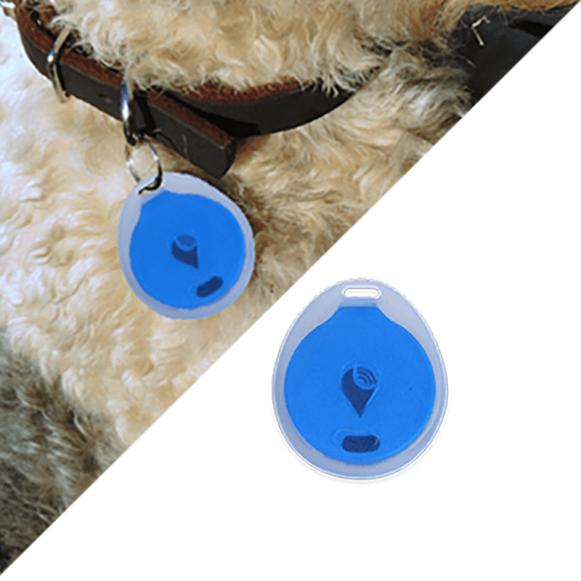 trackr-bravo-water-resistance-pet-collar-c5dca71cbf113783308f6a1b9356d14a
